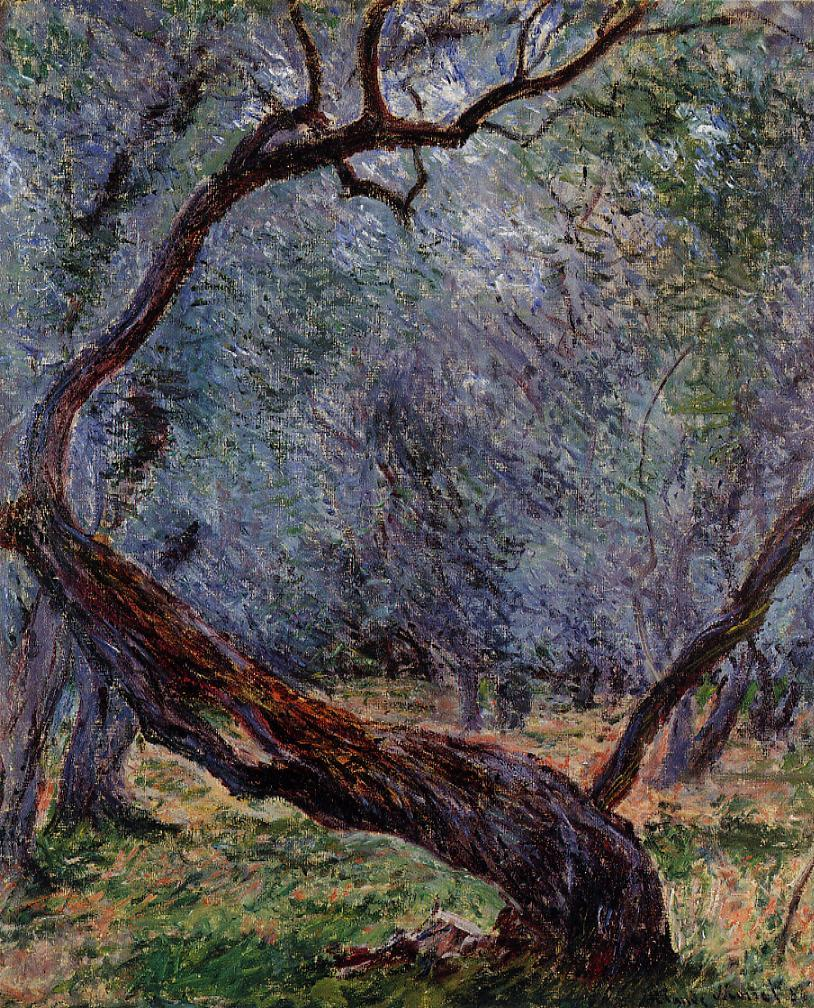 Olive Trees (Study), 1884 by Claude Monet
