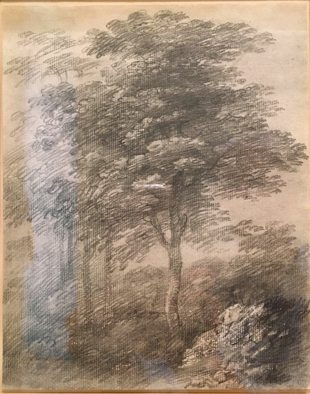 "Study of a Tree, 1755-59, graphite with smudging, worked with gum arabic, Thomas Gainsborough.  He worked  en plein air  from early youth, regarding the English countryside as his first textbook and ""taking lessons from the sun-set clouds"" as his first biographer, George William Fulcher, described. The Morgan Library. (Photograph J. Cook, alas with some light reflections!)"