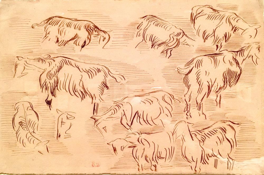 Ten Studies of Goats, 1837 (?), pen and brown ink, Eugène Delacroix (photograph J. Cook)