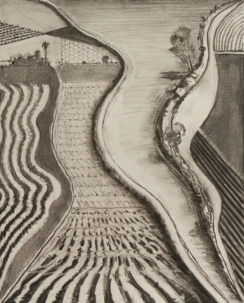 Study for Brown River , 2002, charcoal. From the artist's studio. © Wayne Thiebaud/Licensed by VAGA, New York, NY (Image courtesy of the Morgan Library, New York)