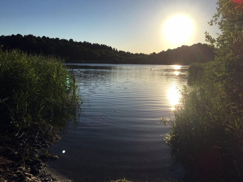 Wild Night Out Swim Hatchmere3 (1).JPG
