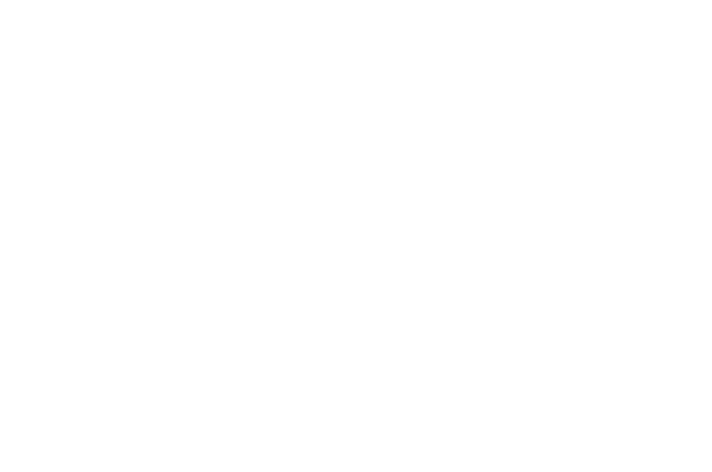 Best Narrative Feature - NYLA International Film Festival -  2016_WHITE.png