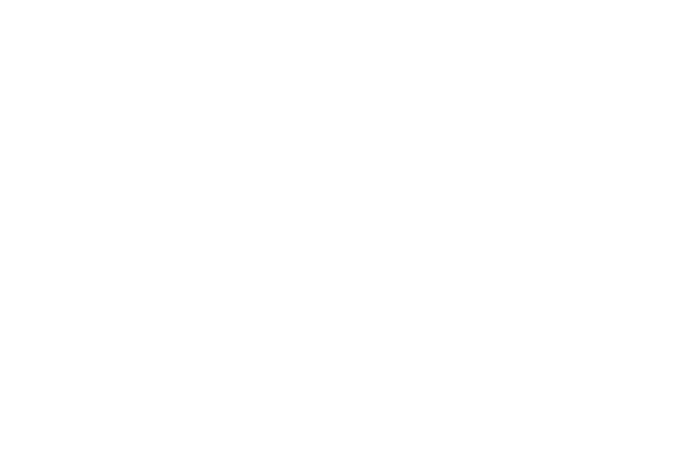 OFFICIAL SELECTION - Lighthouse International Film Festival -  2016_WHITE.png