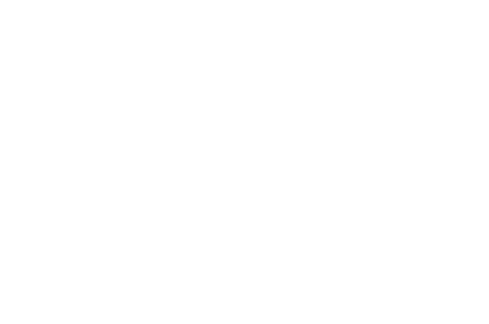 OFFICIAL SELECTION - Singapore International Film Festival -  2016.png