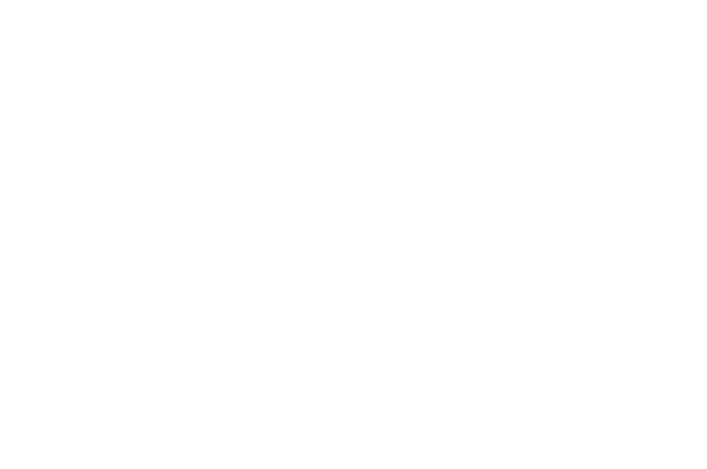 OFFICIALSELECTION-NeuWorldInternationalFilmFestival-2016 copy.png