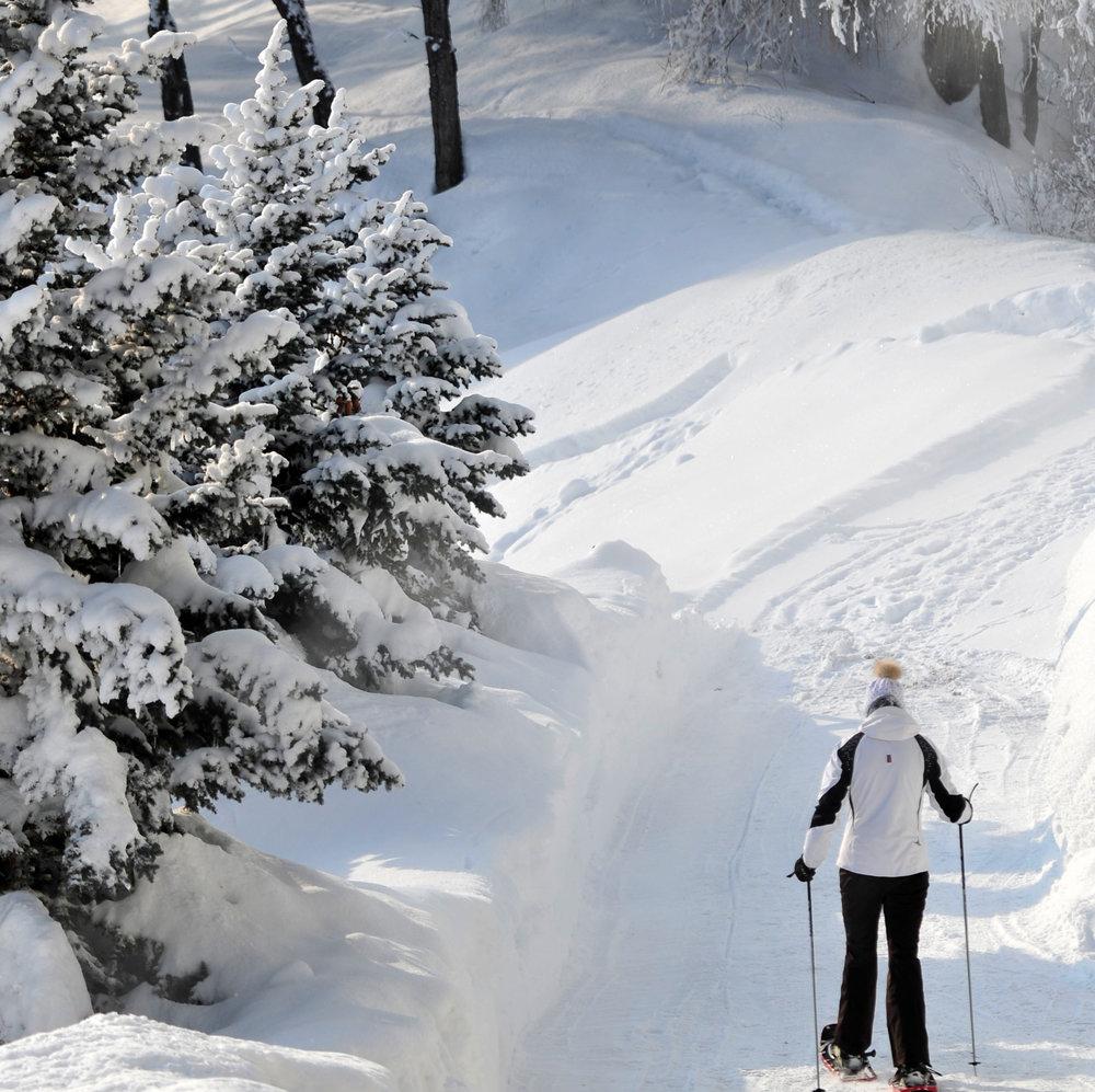HOPA_Schneeschuhwandern.jpg