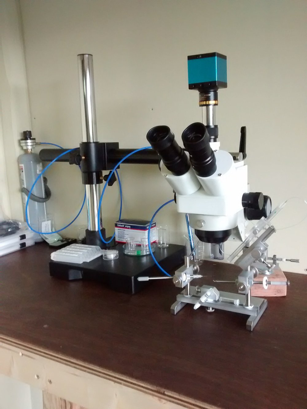 Microscope set up.jpg