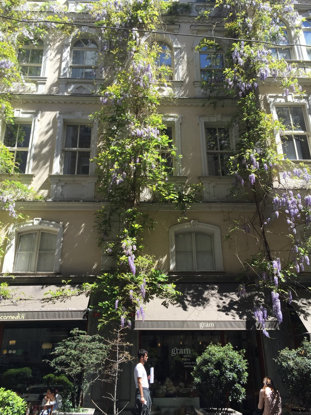 A wisteria laden cafe in the cool Beyoglu district