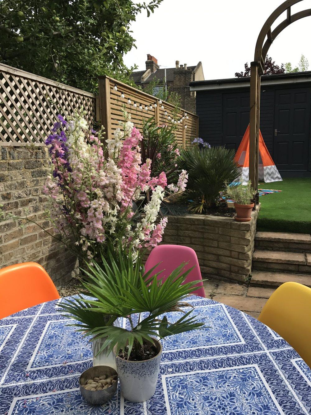 Festoon lighting, plant pot and nibbles bowl -  Sainsbury's Home