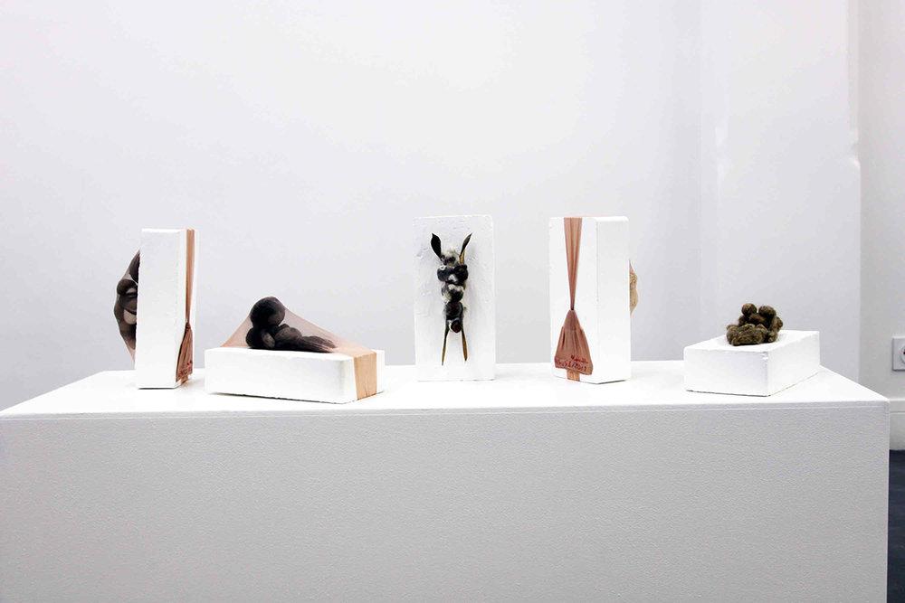 Chtoniennes - 2015  galerie Sator  Paris