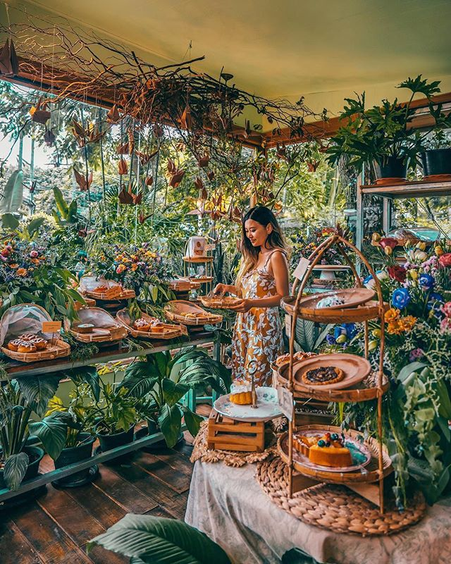 """Forest or Bakery?🍰🌿"" - @incyvincyspider ⠀⠀⠀⠀⠀⠀⠀⠀⠀ Get up to £25/$30 off your next GoHype booking, now available on the App Store. Link in bio 👉 @gohypetravel ⠀⠀⠀⠀⠀⠀⠀⠀⠀ Photo courtesy of @incyvincyspider #gohypetravel #chiangmai #thailandinstagram #amazingthailand #thaistagram #thailand_allshots #adayinthailand #ig_thailandia"