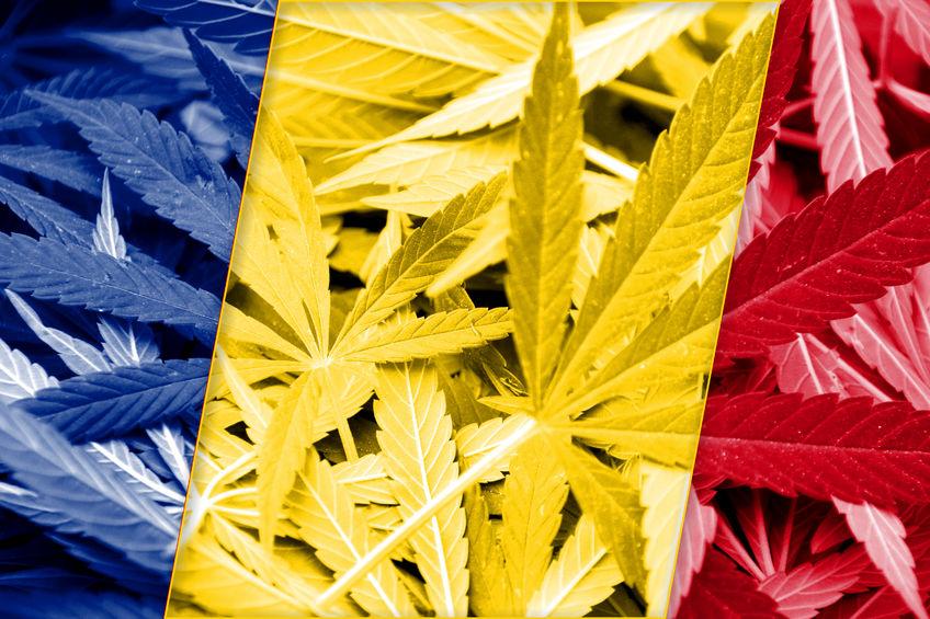 Romania-cannabis.jpg