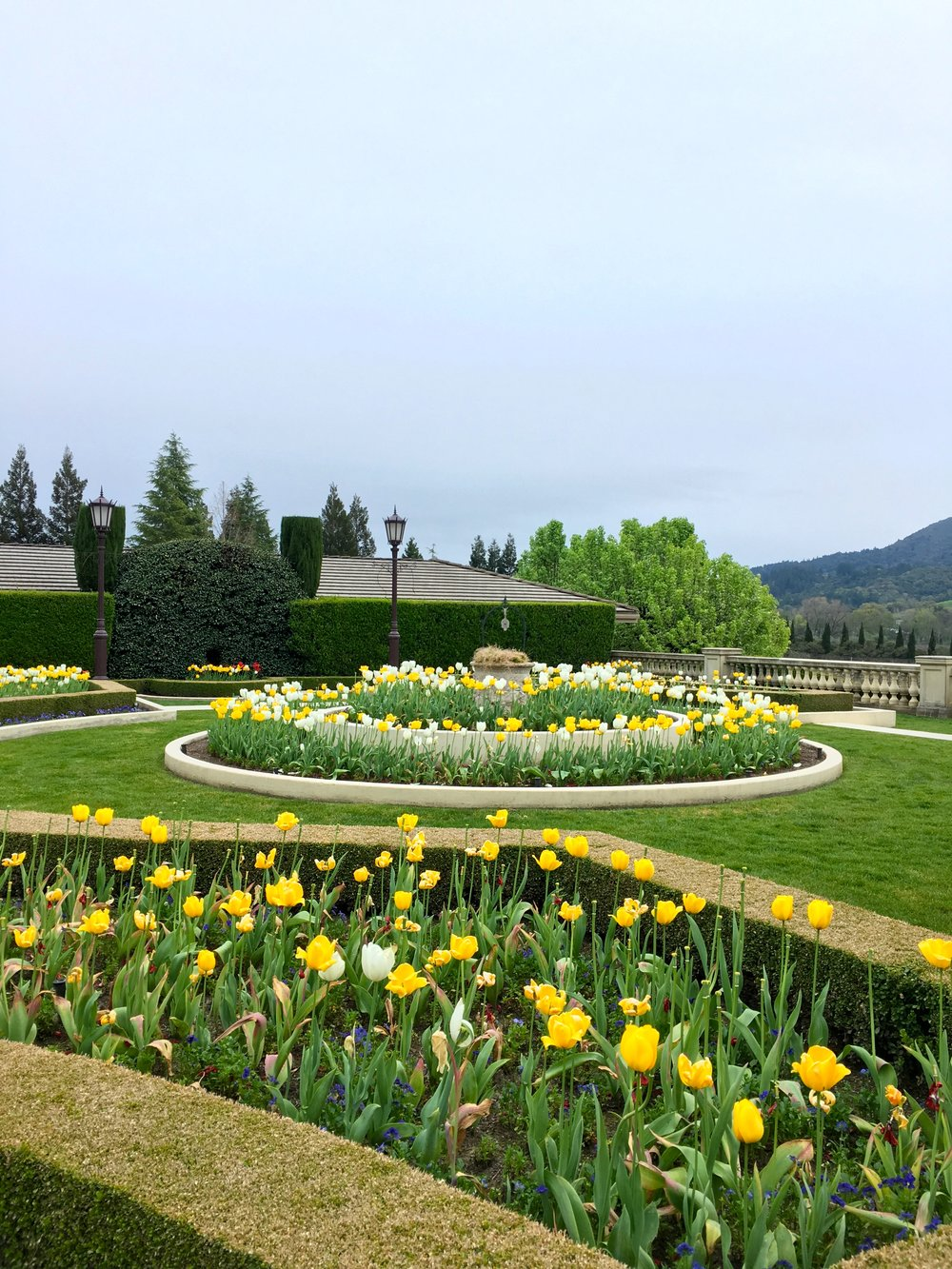 The gardens at Ferrari Vineyard