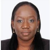 Omokehinde Adebanjo Vice President and Area Business Head, West Africa, Mastercard