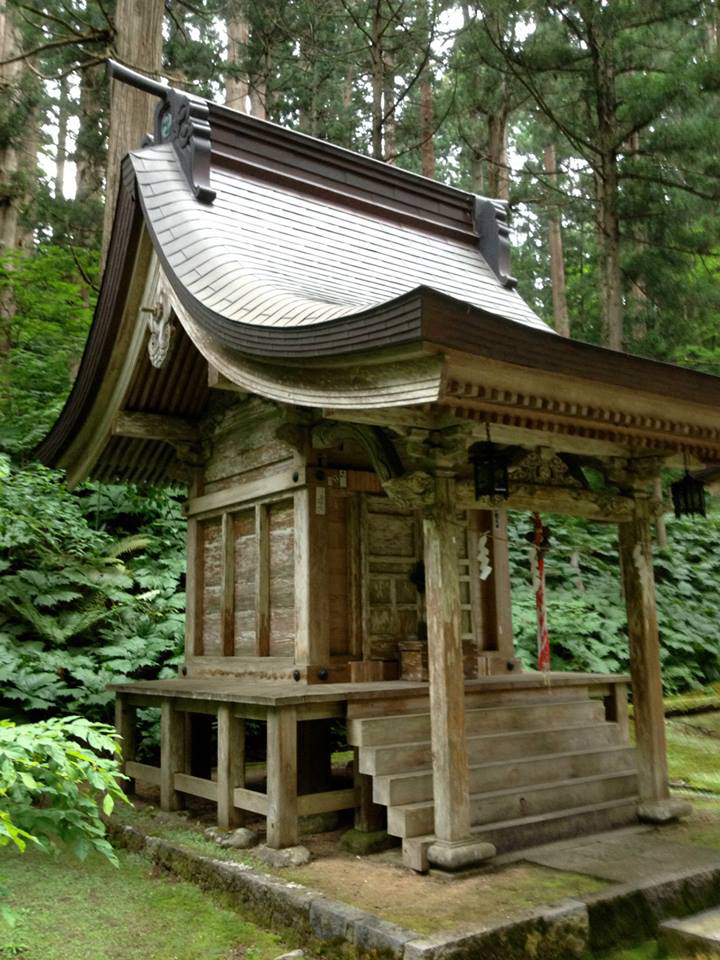 travelling in japan temples forest bathing zen shinto Buddhism norwich small shirne.jpg