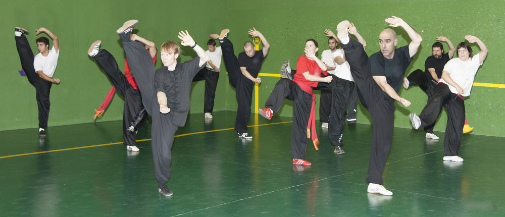 Choy li fut kung fu seminar in zaragoza .jpg