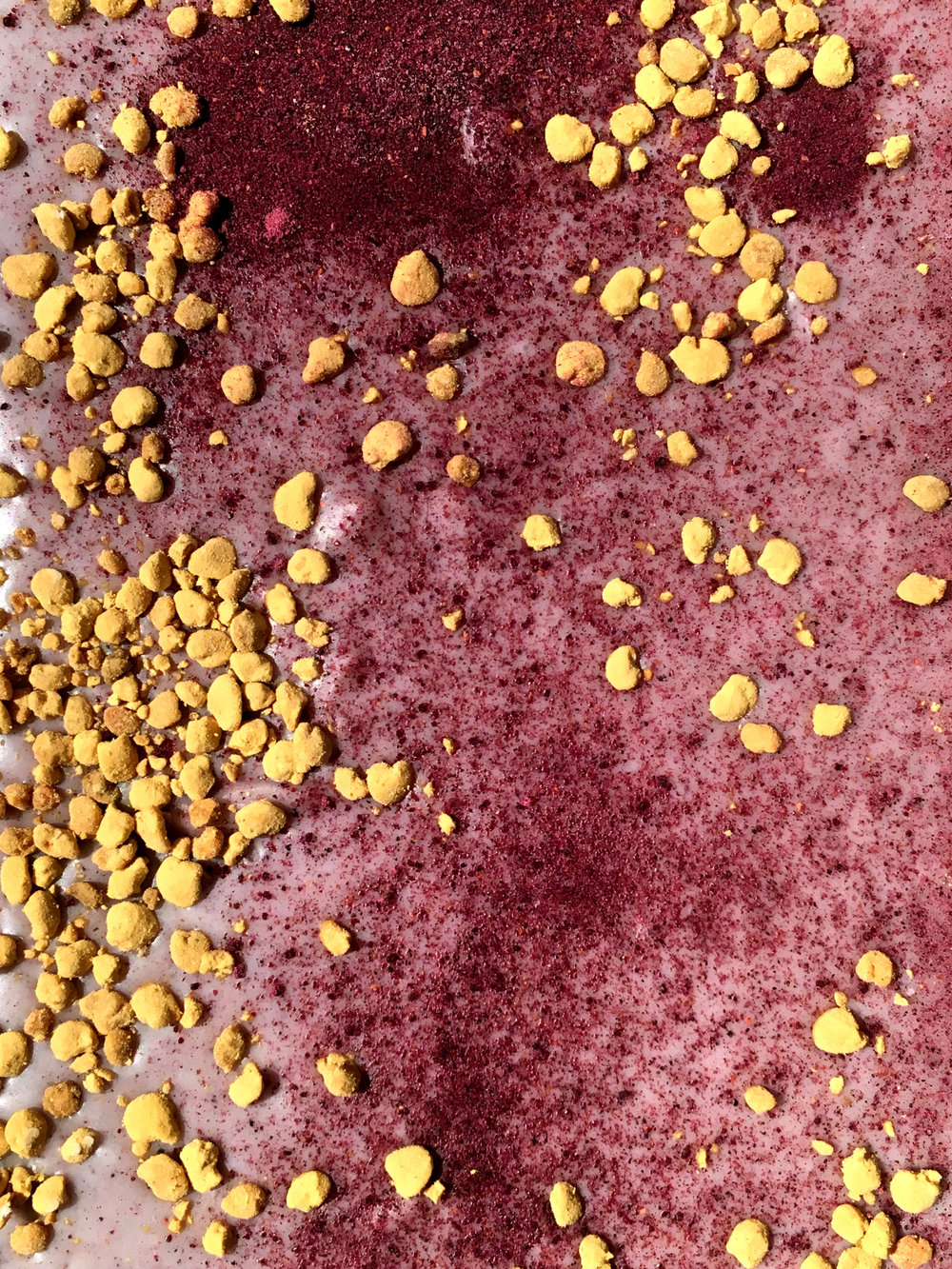 Blueberry Bee Pollen Bar