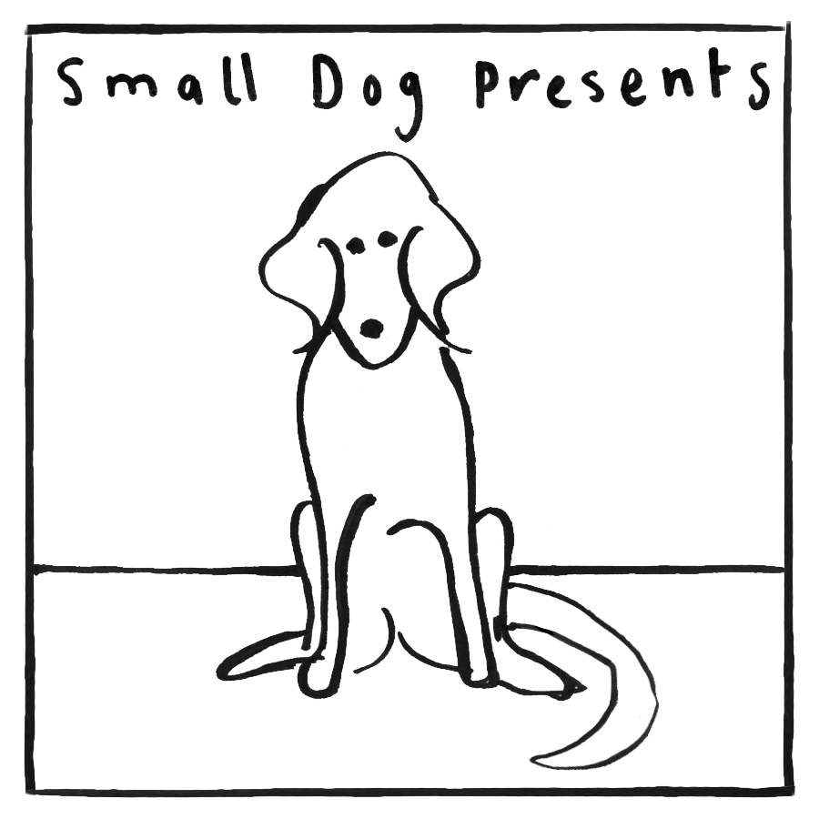 Small dog presents.jpg