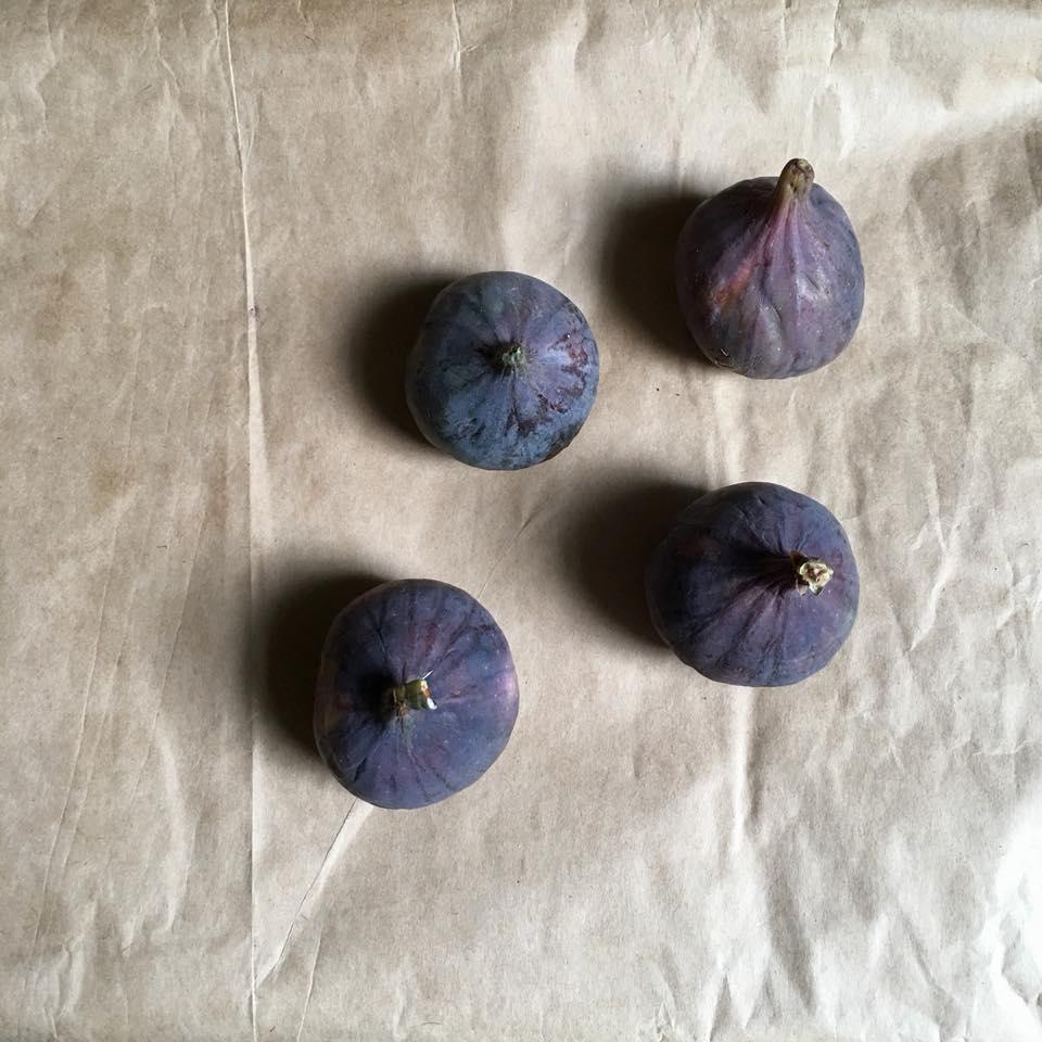 Figs Luke .jpg