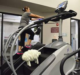 This quirky foam sheep showed up at a gym in Hillsboro, OR as part of a local art project. (Westside Cultural Alliance)