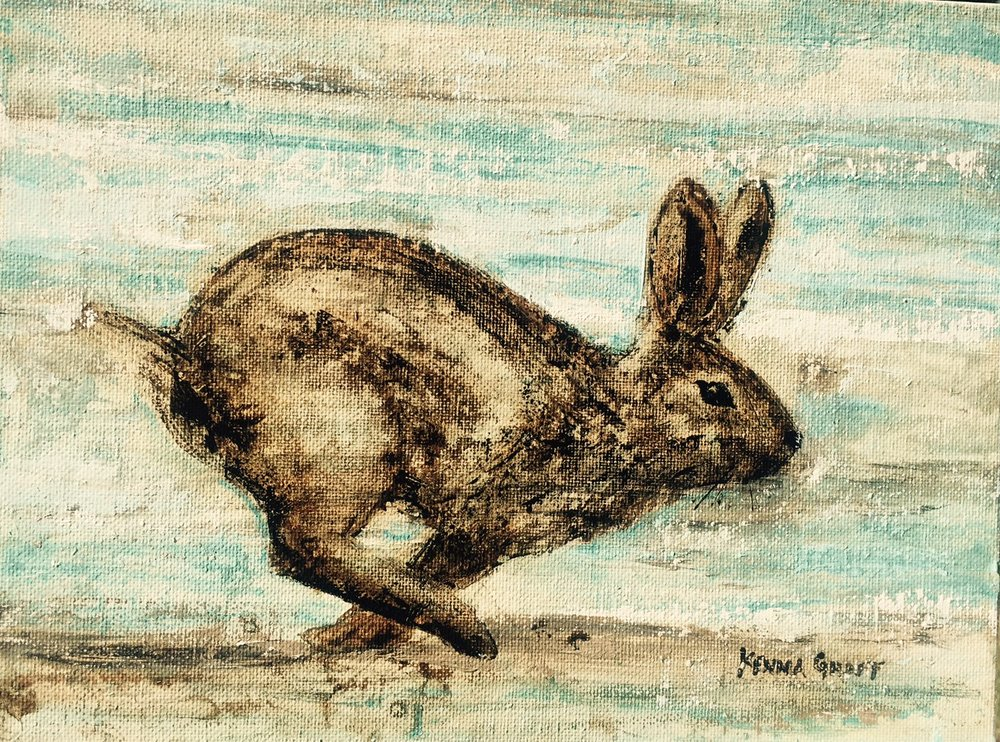Catch a Wild Hare