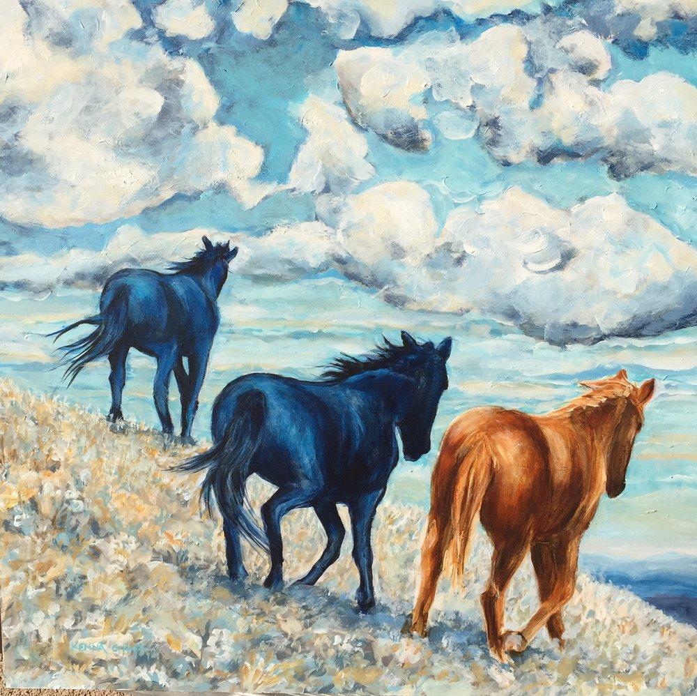 Wild Pony Drifters