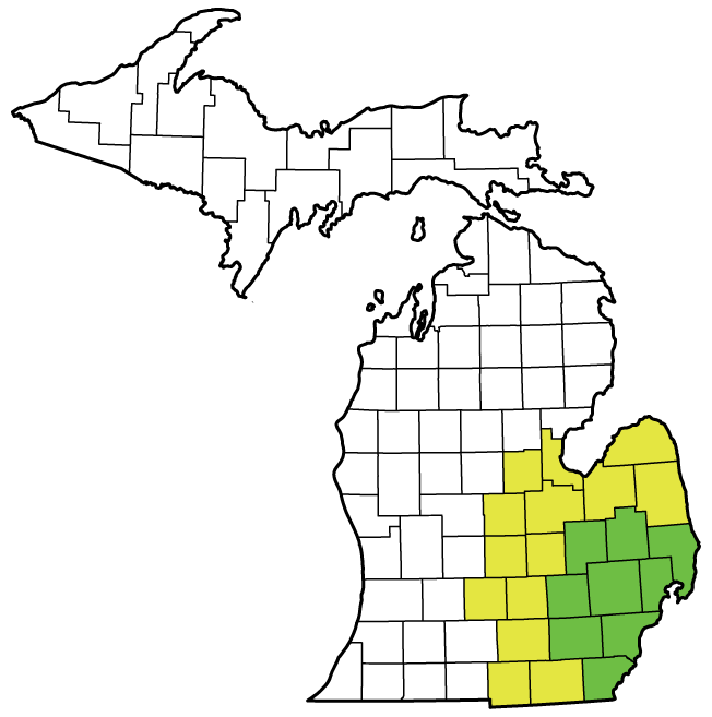 Service Area XCel Restoration - Michigan map of counties