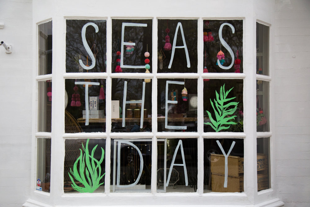 Our gal Sarah got a little punny with our windows that face out to Touro Park, carpe that diem!