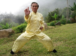sifu ofsz yellow.jpg
