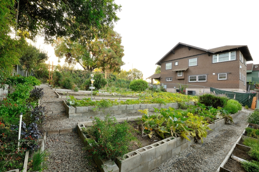Parkway's Garden