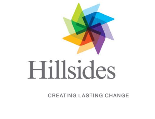 hs-new-logo1.jpg