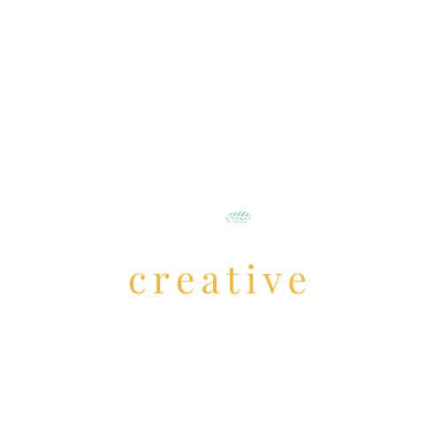 Reel Fly Creative