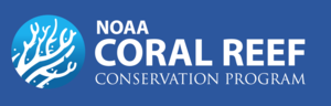 NOAA+Coral+(blue).png