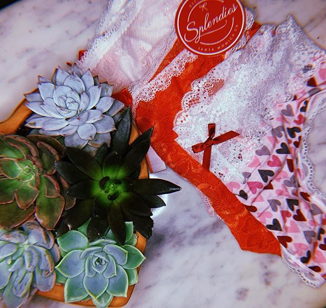 "Guys, it is not too late to get your girlfriend a great gift for Valentine's Day, order her @splendies ! Splendies is a subscription service that sends the cutest panties right to her door. Use code ""SPLENDIES"" to get 4 dollars off your first 3 pairs! #sponsored #blogger #blogging #blog #beautyblogger #splendies"