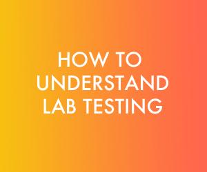 Understanding Labs.jpg