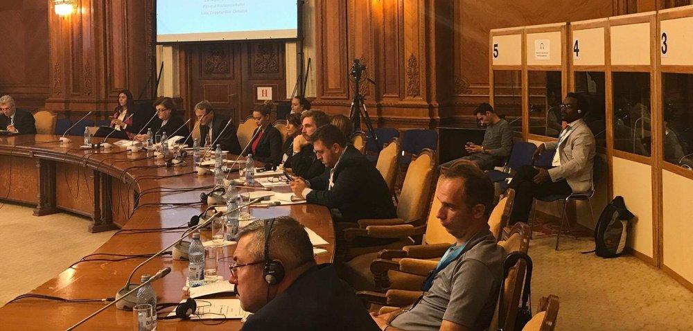 Romania I AM Romania Govt Mtg.JPG