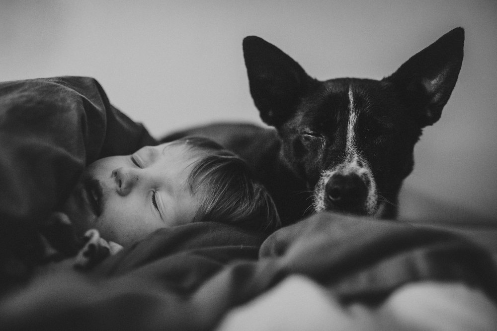 boy and dog sleeping together