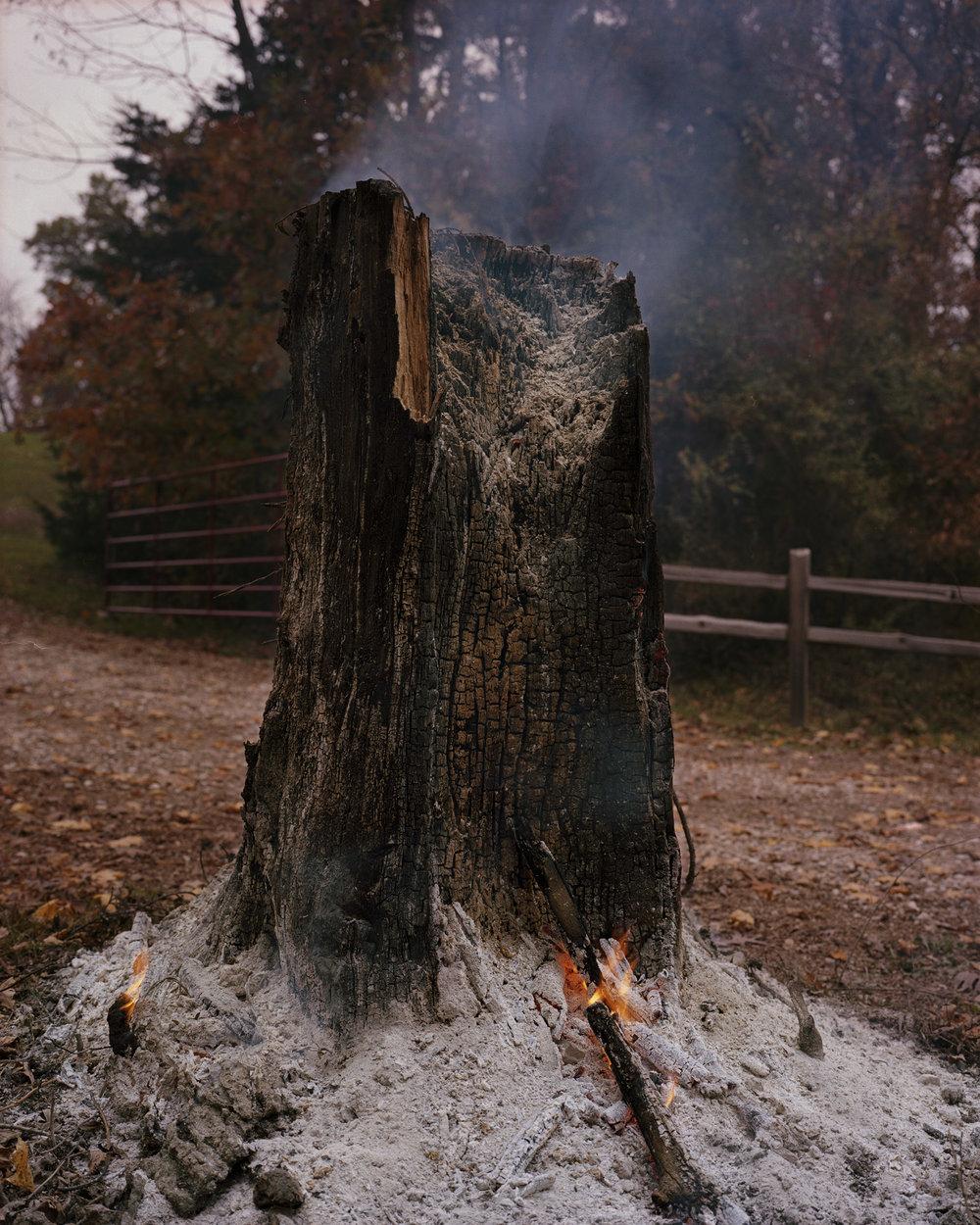 burning stump001.jpg