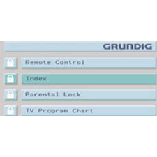 GRUNDIG GRUNDIG'S ART SERIES DESIGN Patton Design integrated satellite, web, audio, television, and DVD GUI into one universal system.