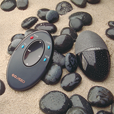 GO VIDEO    FORM FOLLOWS NATURE   Palmate- a remote inspired by ocean rocks.