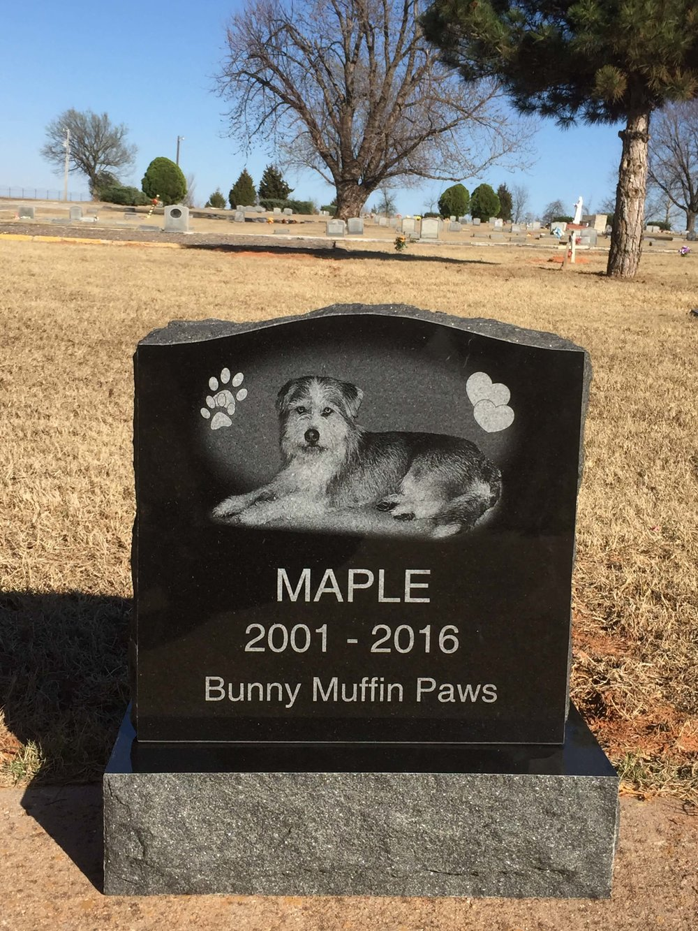 Pet Memorial - Laser Etched - Granite.JPG