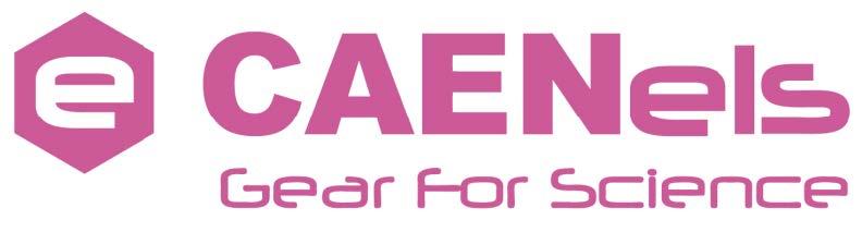 logo CAEN ELS.jpg