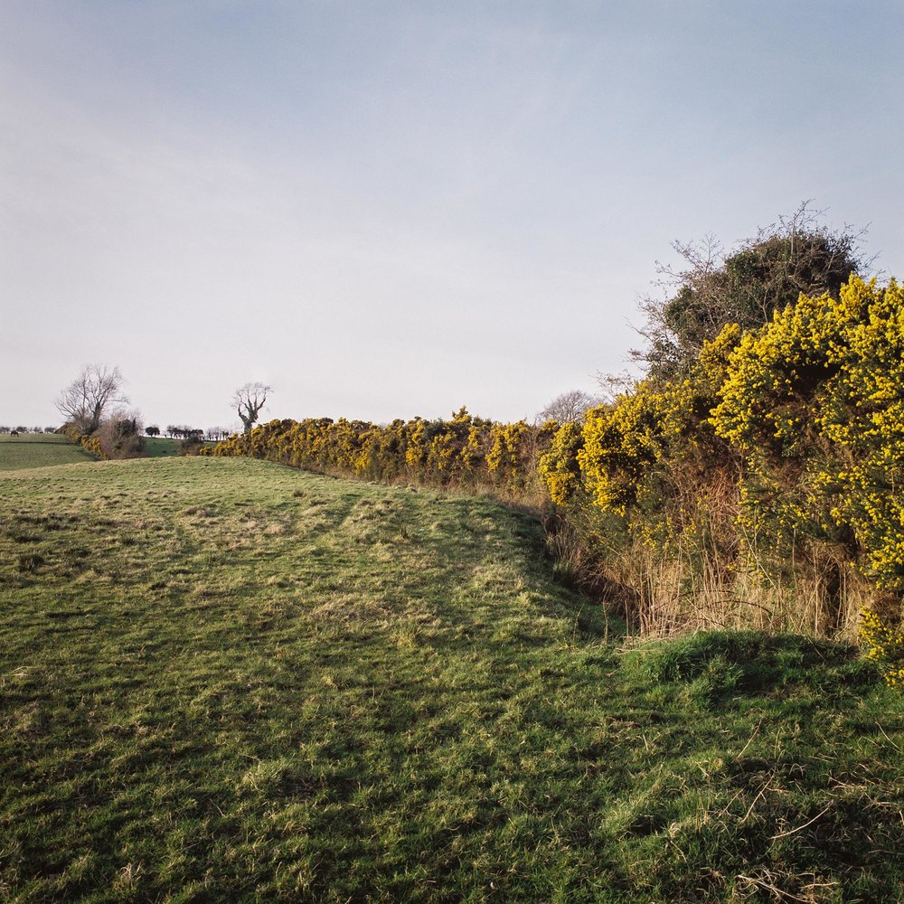 The border between County Derry, Northern Ireland, (left, south) and Country Donegal, the Republic of Ireland, is marked by a hedgerow in Slievebawn
