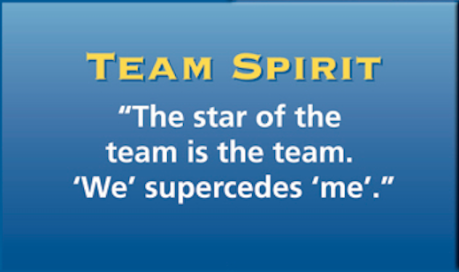 Team-Spirit.png