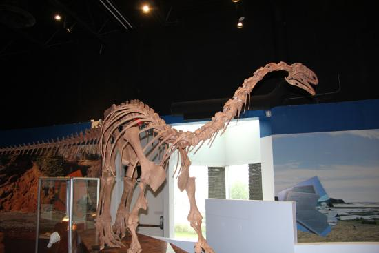 fundy-geological-museum.jpg