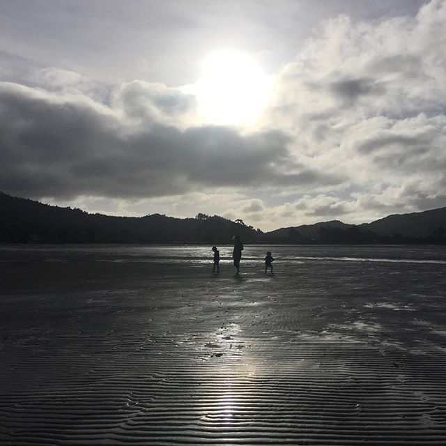 Beach searchers