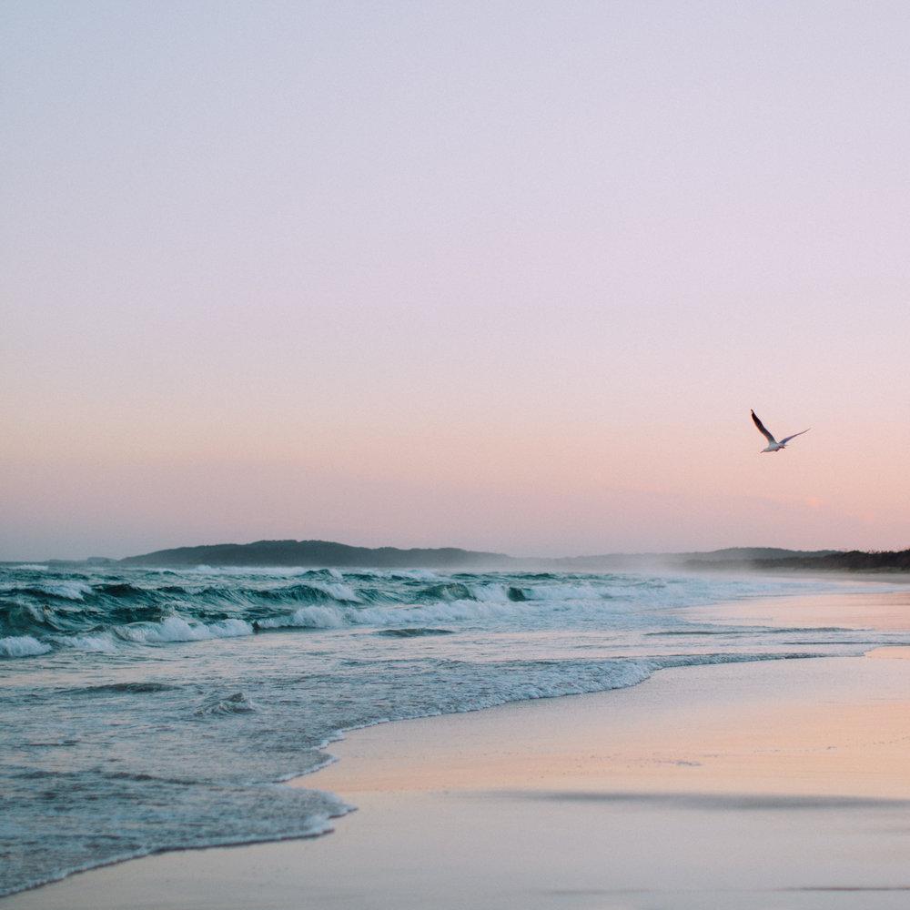 golden hour at tallows beach
