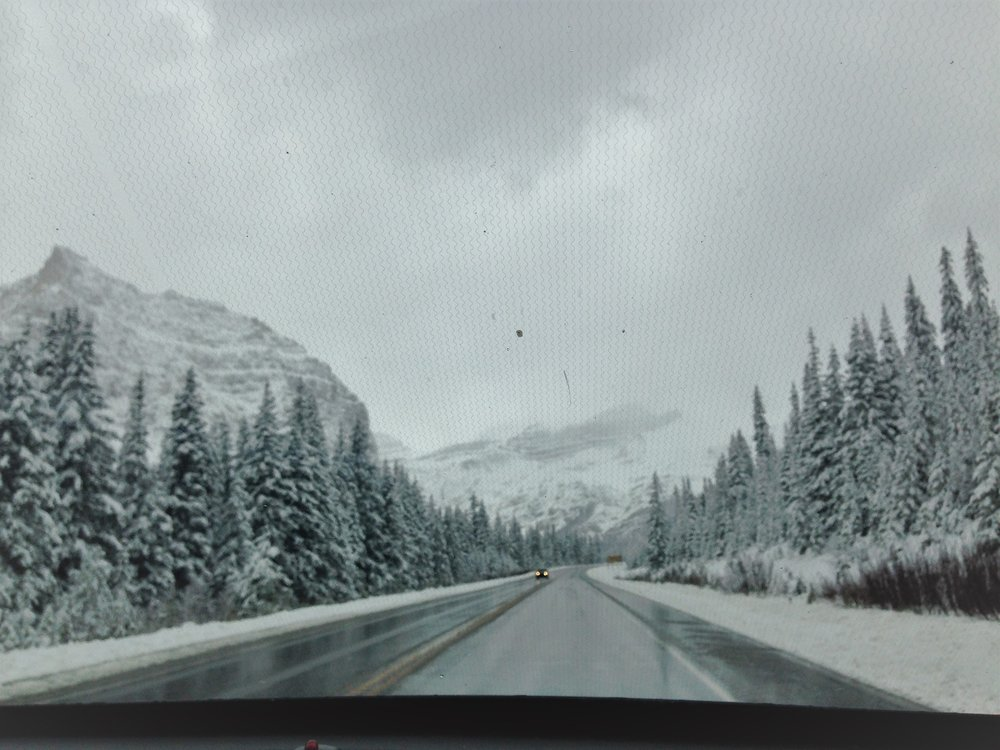 View from driving - more snow