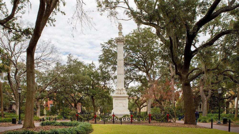 331A5111-Savannah-03.jpg