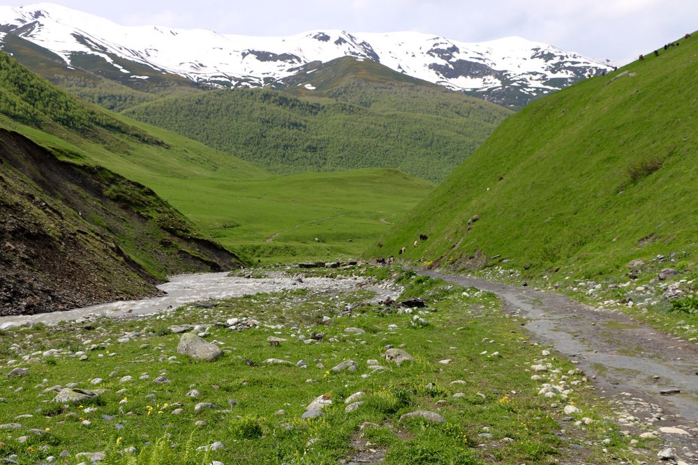 The route to Shkara glacier